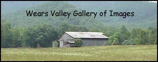 A banner titling the Wears Valley Gallery of Images